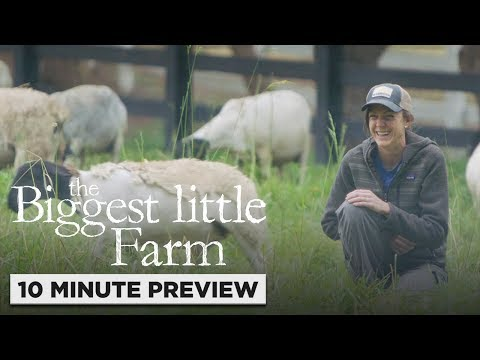 The Biggest Little Farm | 10 Minute Preview | Film Clip | Own It Now On Blu-ray, DVD & Digital