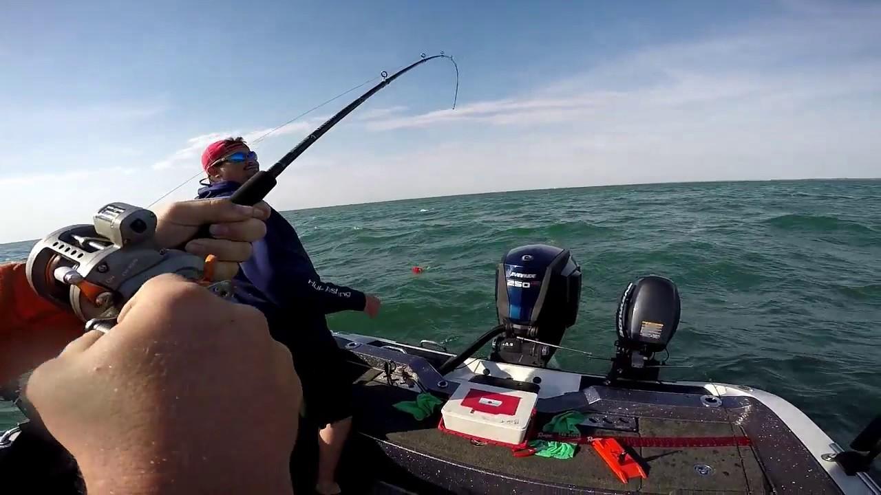 Lake erie walleye fishing 2017 youtube for Lake erie fishing report 2017