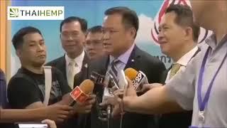 thaihemp    กัญชงจากพืชเสพติด สู่พืชเศรษฐกิจใหม่