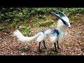 दुनिया के 5 सबसे अजीबो-गरीब जानवर ( आप विश्वास नहीं करेंगे ) Unique Animals You Won't Believe Exist
