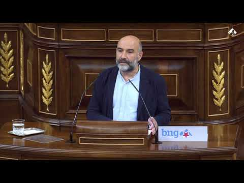 """Néstor Rego: """"VOX reafirma hoxe no Congreso que son un partido totalitario e fascista"""""""