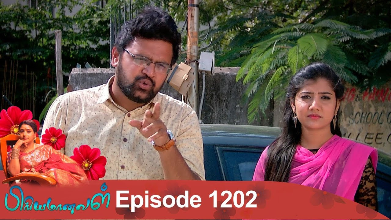 Priyamanaval Episode 1202, 24/12/18