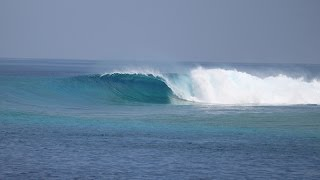 Surfing Cokes, the Maldives 2016