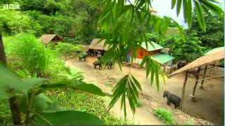 The Hairy Bikers Asian Adventure S1 E3 Thailand