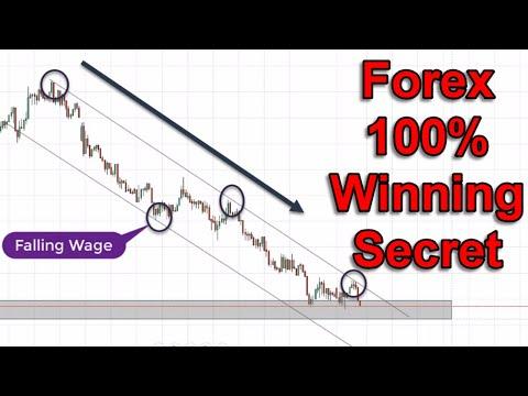Forex 100% Winning