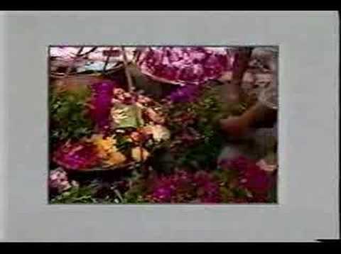 Lang lua lang hoa