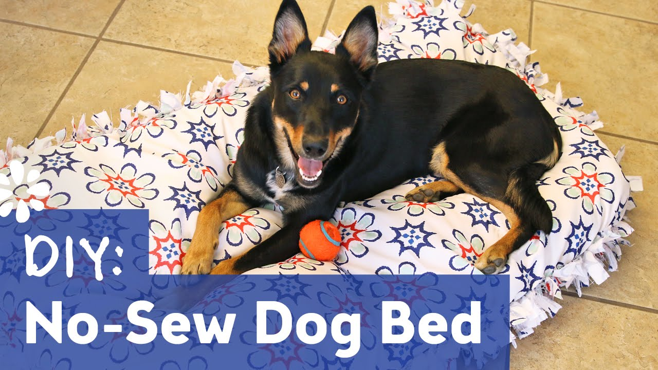 No Sew Fleece Dog Bed