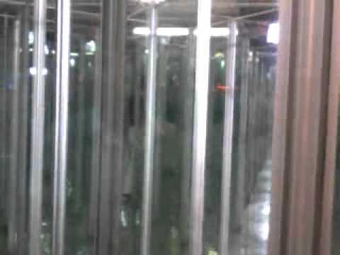 Video divertentissimo casa degli specchi idroscalo - Casa degli specchi ...