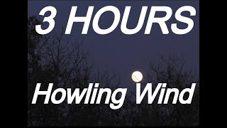 Howling Wind - Relaxing Nature Sounds 3 Hours