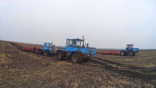Культивация на ХТЗ-17221, первый обед. Застрявший трактор Т-150К-09. ( 25-День 3-Сезона)