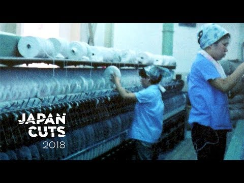 sennan-asbestos-disaster-|-japan-cuts-2018