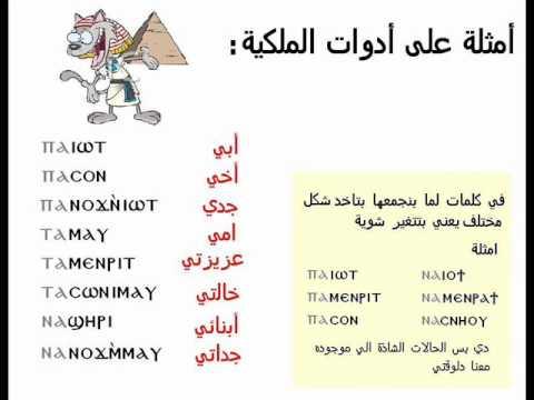 learn egyptian language lesson