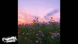 Spazi - In The Meadow