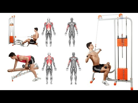 fitness  bodybuilding exercises for beginners  full body