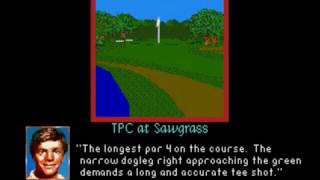 PGA Tour Golf II (SMD) TPC at Sawgrass fly by hole previews