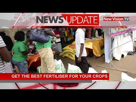 Get the appropriate fertilizers for your crops