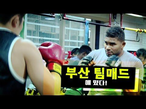 'UFC 헤비급 3위'
