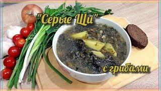 Серые Щи с грибами | Постный суп из сушеных грибов | Щи из зелёной квашеной Капусты | Мужицкая кухня