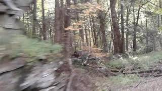 Cheat mountain train clip