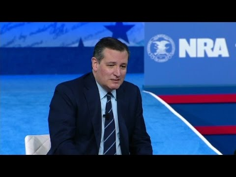 Senator Cruz calls court's gun test nuts