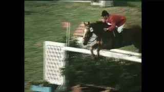 Die Otto-Show VII – Pferde (Harry Hirsch)