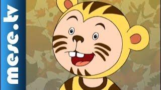 Gryllus Vilmos: Maszkabál - Tigris (gyerekdal, mese, rajzfilm gyerekeknek) | MESE TV