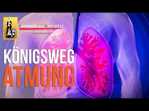 Nutze Deinen Atem! | Atmung als Königsweg zu mehr Energie, Bewusstsein & Gesundheit