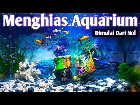 cara-menghias-aquarium-sederhana-2019