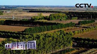 [中国新闻] 世界防治荒漠化和干旱日 · 中国沙漠化治理实现逆转 沙化土地年均减少1980平方公里 | CCTV中文国际