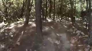 Espinazo del Diablo - Bosque La Primavera en Jalisco