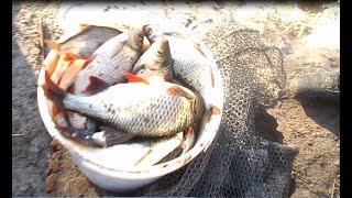 Рыбалка 7 января 2020. Рождество на Яме с удочкой