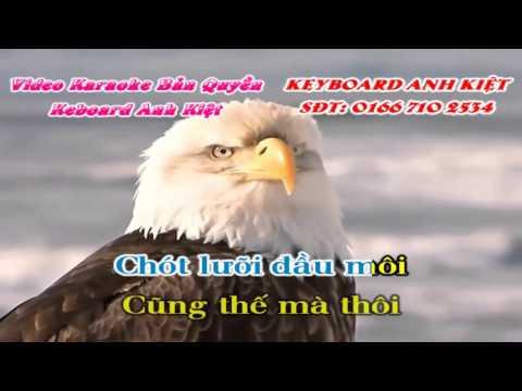 Karaoke   DJ Trở Về Cát Bụi remix thuong nguyen