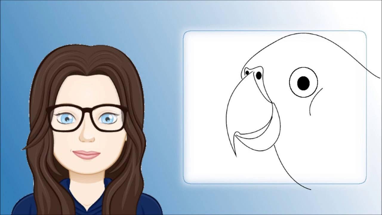Comment Dessiner Un Perroquet