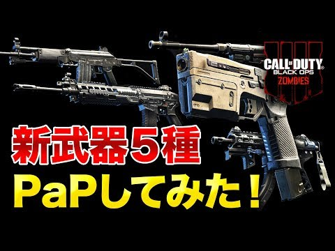 BO4 ゾンビ新武器5種PaPしてみたオススメ武器はアプデv112 SWAT RFT / GRAV / MP40 / DAEMON 3XB / KAP 45