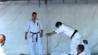 Kyokushin Kai Karate, Baseball Bat Break, Portland Oregon,