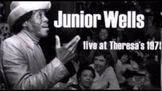 Junior Wells & Phil Guy ~  ''Goin' Down Slow''  Live 1975