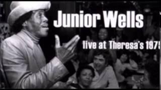 Junior Wells & Phil Guy ~