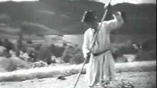 Буковина, земля Украинская 1939 / Bukovyna: a Ukrainian Land