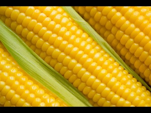 5 Health Benefits of Meize Corn for Pregnant Women During Pregnancy !!