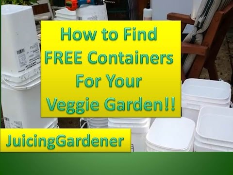 Using containers to grow a vegetable garden with little space