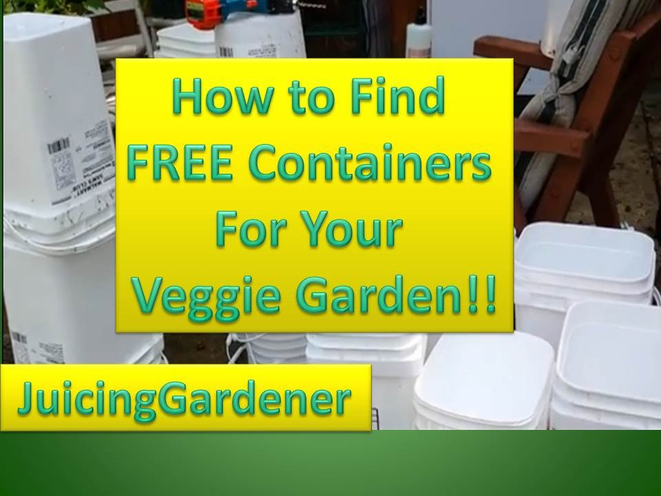 container garden ideas how to find free containers for your vegetable garden youtube