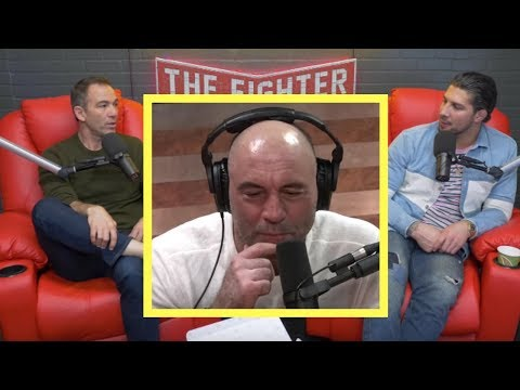 Rogan's Carnivore Diet, Bernie Endorsement, and Stephen A Smith Comments | TFATK