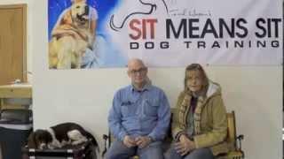 English Springer Spaniel Dog Training