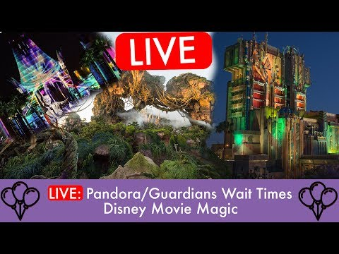 Live Friday Disney Chat : Pandora / Guardians Wait times and more
