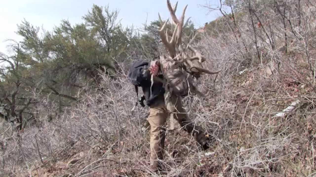2014 Utah Elk Shed Hunting The Big 5 Brandon Pitcher Ep