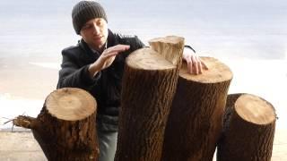 видео Выбор древесины для резьбы