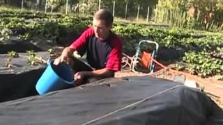 Подготовка почвы для посадки рассады клубники(, 2013-05-18T21:22:08.000Z)