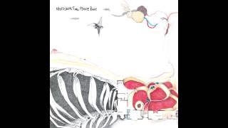 Handsome Furs - Plague Park (Full Album)