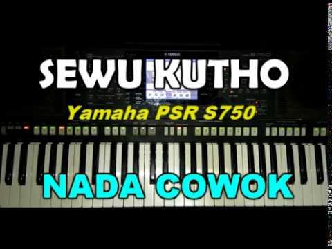 Didi Kempot -Sewu Kuto Lyric (KARAOKE) By Saka