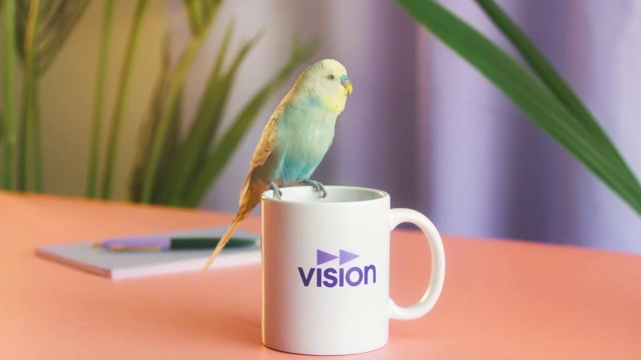 Bildresultat för vision gör ditt jobb till din dröm